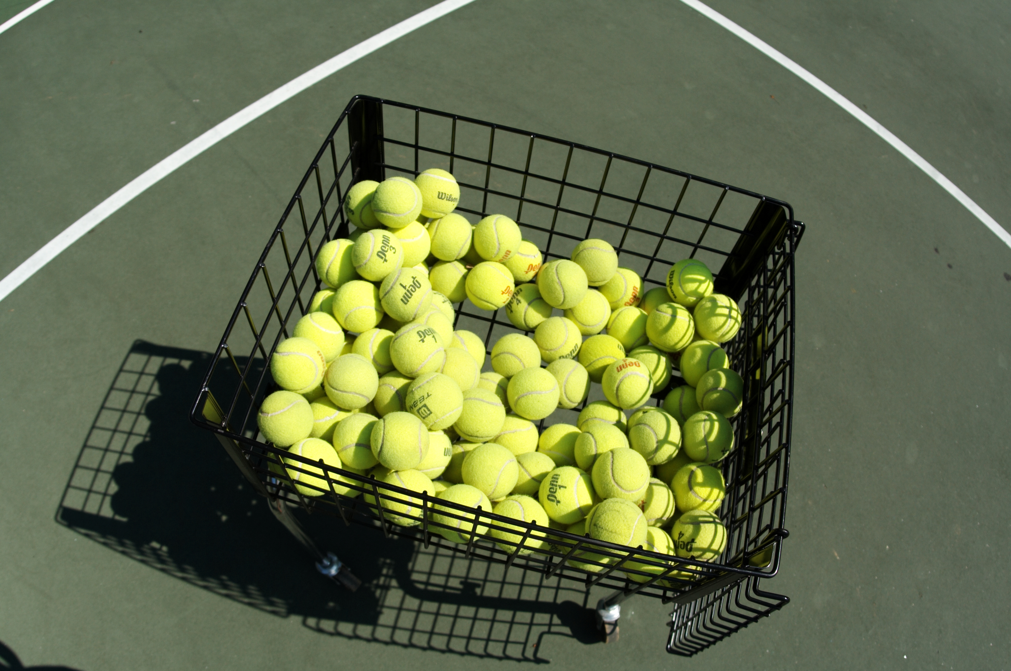 A Tennis Lesson In Survival Jobs Immigrant Connect